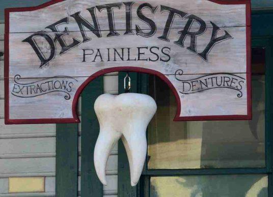 """Einen eigenen """"Bio-Zahn"""" nachwachsen lassen"""