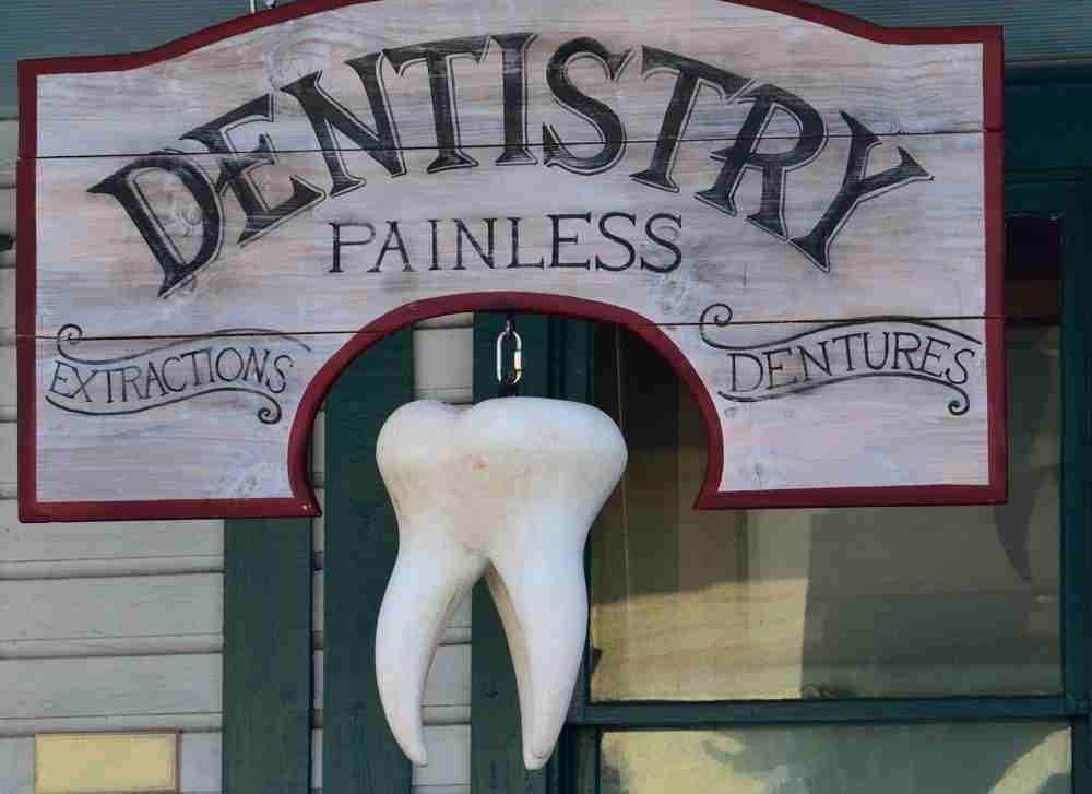 Einen eigenen Bio-Zahn nachwachsen lassen - arzt & karriere