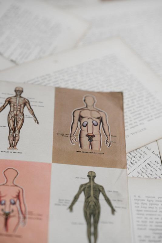 Weiterbildung Nephrologie